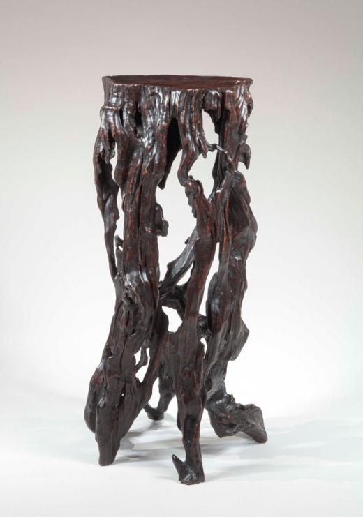 root stand of irregular twisting gnarled shape